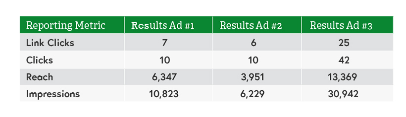 Table showing results by for individual ads for Facebook ad KPIs